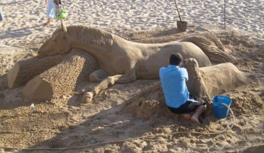 horse in sand