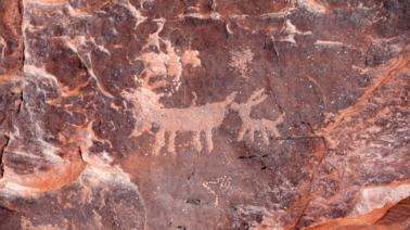 pedraglyphs2